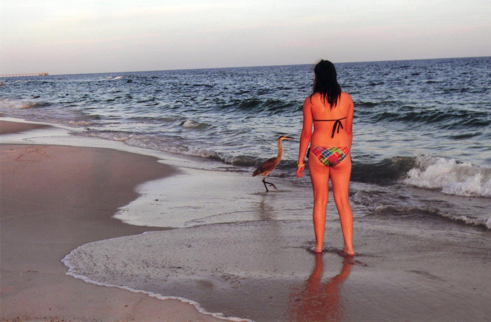 egret www.celeb nudity.com   NEW Nude Celebs, Celebrity Nudes ...